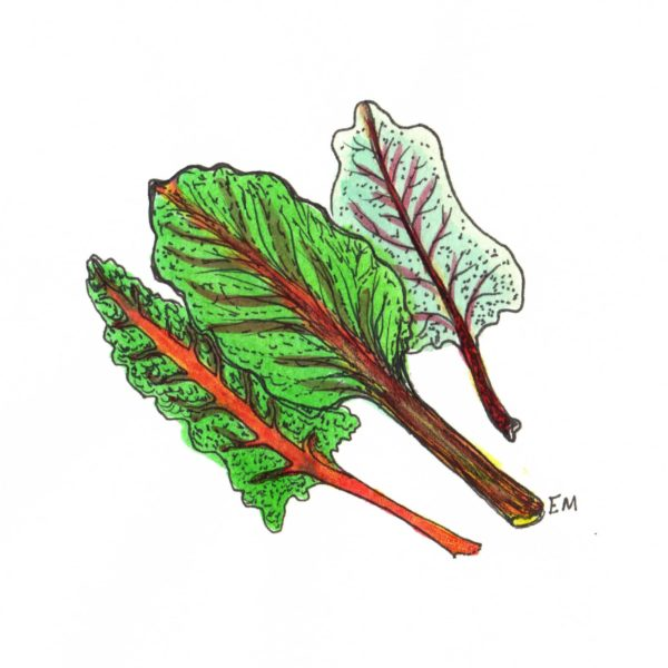 ruby red chard color